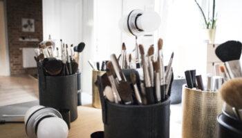 vegan makeup brush set